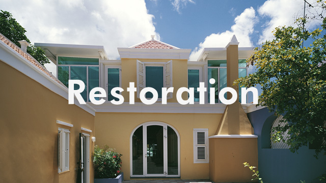 cat_restoration
